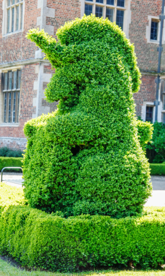 Unicorn Topiary!