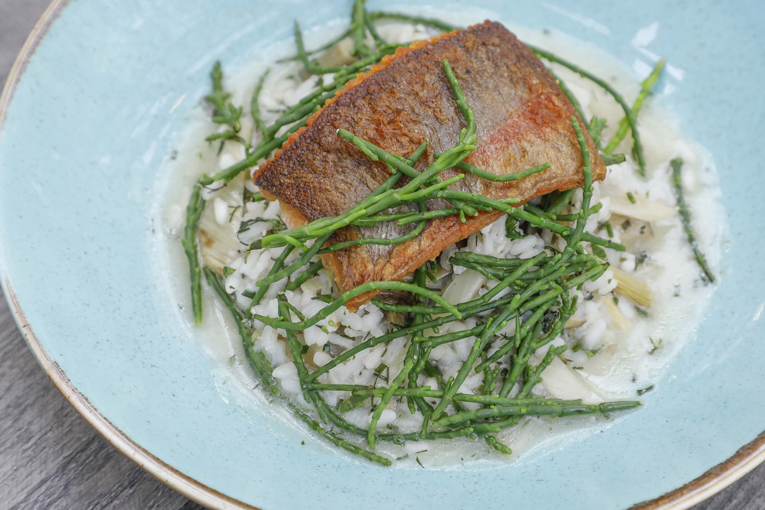 Rutland Water trout fillet with roasted fennel, artichoke risotto and rock samphire £17.95.